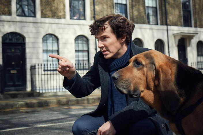 Sherlock and his latest crime solving companion in Season 4. (Photo:  Courtesy of Robert Viglasky/Hartswood Films for MASTERPIECE)