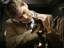 "The Tenth Doctor and an adorable kitten, courtesy of Tennant's time on ""Doctor Who"". (Photo: BBC)"