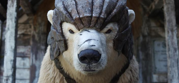 Photo: His Dark Materials: Season 1 (Image Courtesy of HBO)
