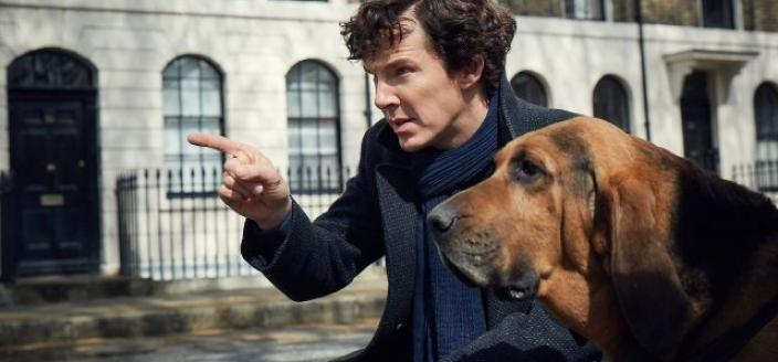 (Sherlock and his latest crime solving companion in Season 4. (Photo:  Courtesy of Robert Viglasky/Hartswood Films for MASTERPIECE)